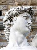 David of Michelangelo  Piazza Della Signoria  Florence  UNESCO World Heritage Site  Tuscany  Italy