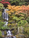 Heavenly Falls and Autumn Colors  Portland Japanese Garden  Oregon  USA