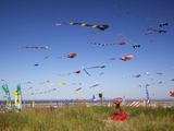 Kites  International Kite Festival  Long Beach  Washington  USA