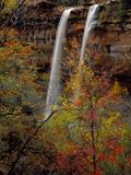 Waterfall  Zion National Park  Utah  USA