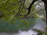 Lago Chico  Huerquehue National Park  Chile