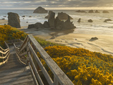 A Stairway Leads to the Beach in Bandon  Oregon  USA