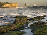 Surf on Four-Mile Beach  Santa Cruz Coast  California  USA