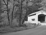 Wild Cat Covered Bridge  Lane County  Oregon  USA