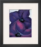 Purple Petunias  1925