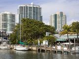 Dinner Key Marina in Coconut Grove  Miami  Florida  United States of America  North America