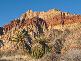 Red Rock Canyon Outside Las Vegas  Nevada  United States of America  North America