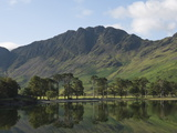 The Lake Buttermere Pines with Haystacks  Lake District National Park  Cumbria  England  UK  Europe