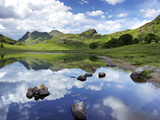 Blea Tarn and Langdale Pikes  Lake District National Park  Cumbria  England  United Kingdom  Europe