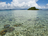 Crystal Clear Water in the Marovo Lagoon  Solomon Islands  Pacific