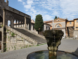 Fountain and Terrace of the Pope's Palace in Viterbo  Lazio  Italy  Europe