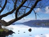 Sunrise  Ambleside  Lake Windermere  Lake District National Park  Cumbria  England  UK  Europe