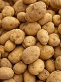 Potatoes at Sunday Morning Market  Pollenca  Tramuntana  Mallorca  Spain
