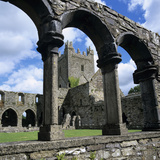 Ruins of Cistercian Jerpoint Abbey  Jerpoint  County Kilkenny  Leinster  Republic of Ireland
