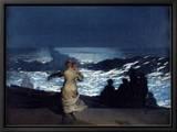 Summer Night, 1890 Tableau sur toile encadré par Winslow Homer