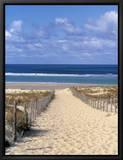 Cap Ferret, Bassin d'Arcachon, Gironde, Aquitaine, France Tableau sur toile encadré par Doug Pearson