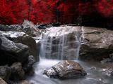 Rouge vision Papier Photo par Philippe Sainte-Laudy