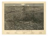 1887  Denver Bird's Eye View  Colorado  United States