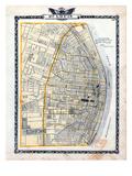 1876  St Louis - City  Illinois  United States