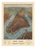 1879  New York City 1879 Bird's Eye View  New York  United States