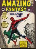 Spider-man (Issue 1) Tableau sur toile