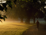 A Jogger Running in Early Morning Mist