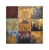 Iris - Patchwork II Giclée par Don Li-Leger