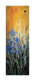 Golden Winged Garden II Giclée par Don Li-Leger