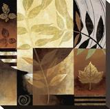 Nature's Elements II