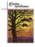 """""""Wild Turkeys Roosting """" Country Gentleman Cover  November 1  1938"""