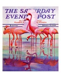 """Pink Flamingos,"" Saturday Evening Post Cover, January 29, 1938 Giclée par Francis Lee Jaques"
