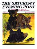 """Bear and Cubs in River "" Saturday Evening Post Cover  August 25  1934"