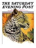 """Leopard "" Saturday Evening Post Cover  August 29  1931"