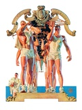 """""""Rowing Team """"August 6  1932"""