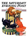 """""""Dogs Eating Hat """" Saturday Evening Post Cover  July 14  1928"""