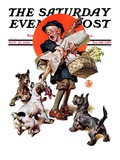 """Barking Up the Wrong Turkey "" Saturday Evening Post Cover  November 27  1926"