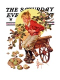 """Too Many Green Apples "" Saturday Evening Post Cover  September 16  1933"