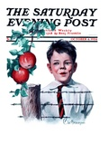 """""""Boy Tempted by Apples """" Saturday Evening Post Cover  October 4  1924"""