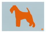 Fox Terrier Orange