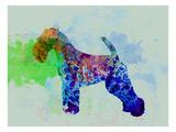 Welsh Terrier Watercolor