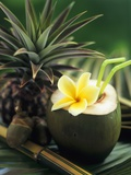 Opened Coconut with Straws and a Pineapple Papier Photo par Vladimir Shulevsky