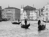 Gondoliers on the Gran Canal  Venice  Veneto Region  Italy