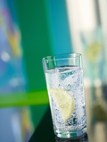 A Glass of Sparkling Mineral Water with a Wedge of Lemon Papier Photo par Brigitte Protzel
