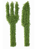 Knife and Fork in Cress