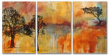 On The Edge Triptych Art