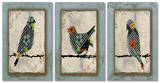 Song Bird Trio Triptych Art