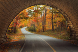 Autumn Tunnel Vision Tableau sur toile par Vincent James