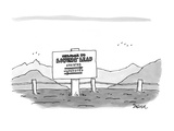 Welcome to Lovers' Leap  Assisted - New Yorker Cartoon