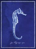 Seahorse Reproduction d'art
