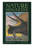Triceratops Head  Nature Magazine